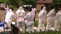 ebola attack